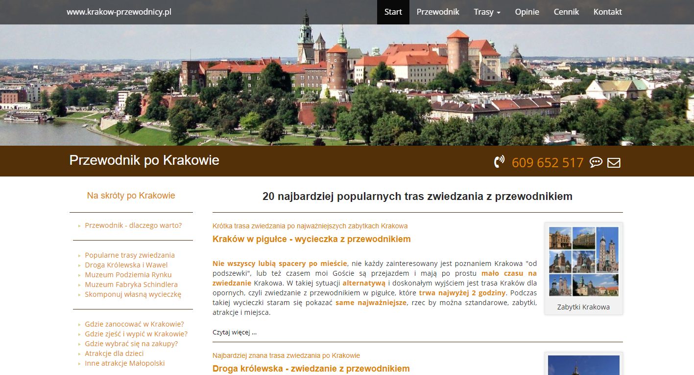 picture of Wawel in Krakow website development frontend developer rental